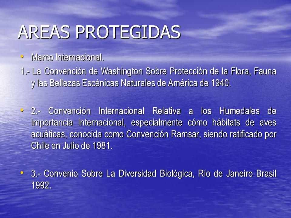 AREAS PROTEGIDAS Convención Ramsar.Convención Ramsar.