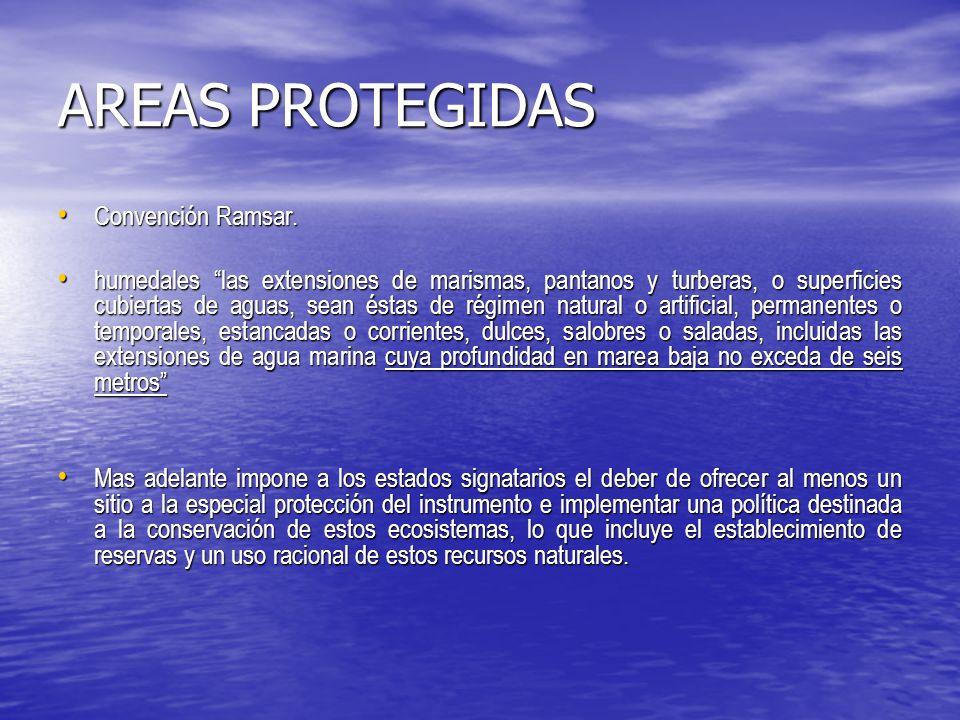 AREAS PROTEGIDAS Artículo I Artículo I 1.