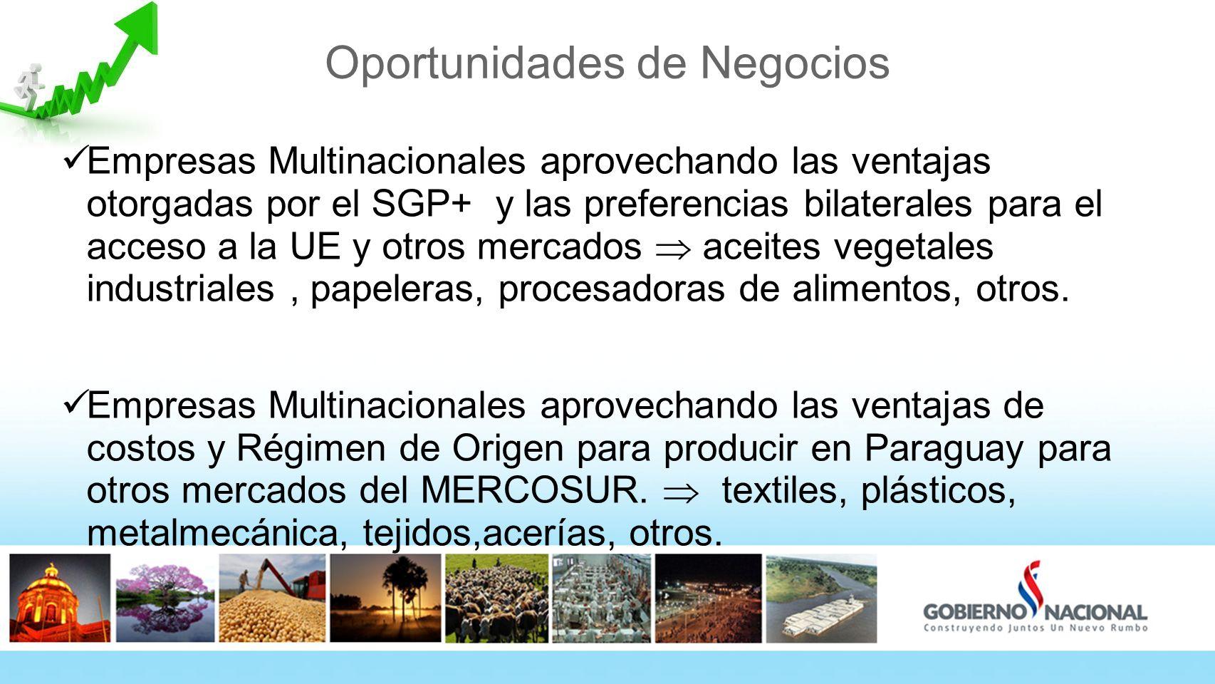 Oportunidades de Negocios Empresas Multinacionales aprovechando las ventajas otorgadas por el SGP+ y las preferencias bilaterales para el acceso a la UE y otros mercados aceites vegetales industriales, papeleras, procesadoras de alimentos, otros.