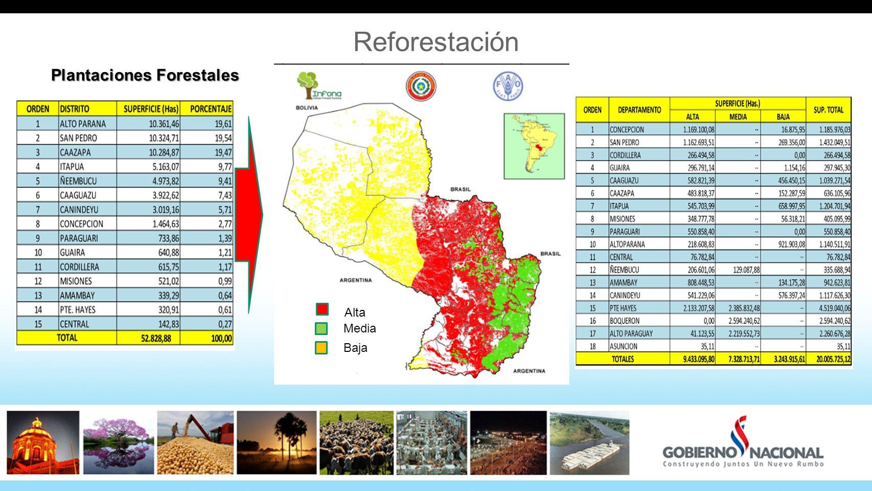 Plantaciones Forestales Alta Media Baja