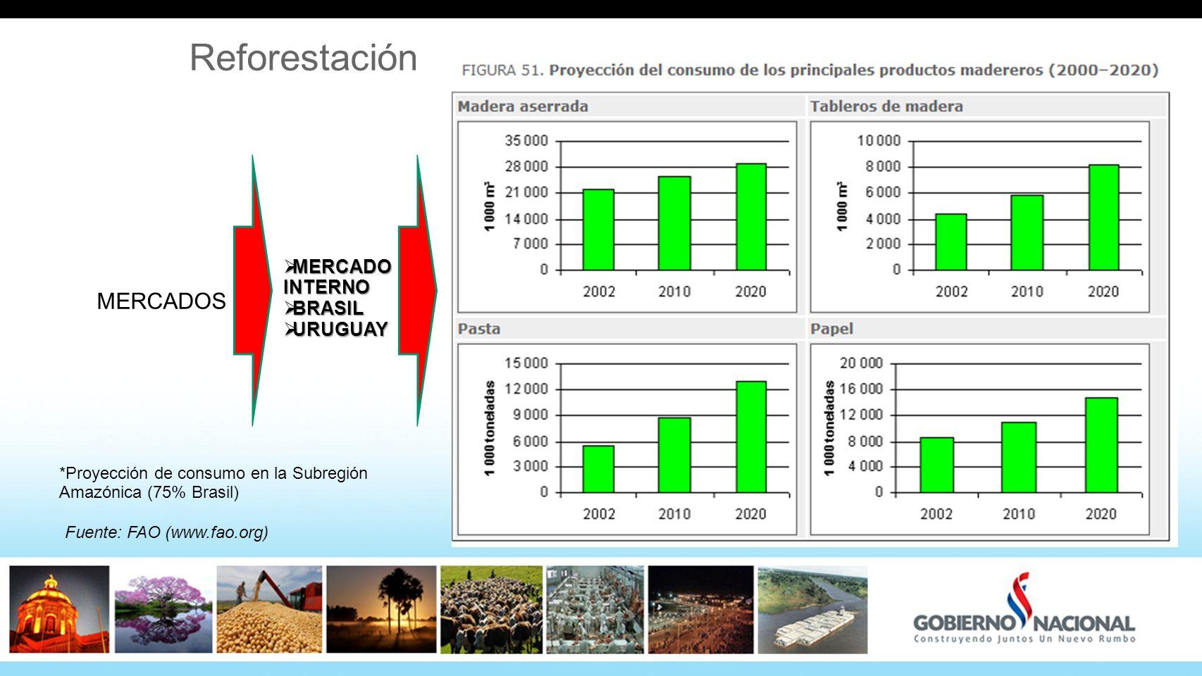 Reforestación MERCADO INTERNO MERCADO INTERNO BRASIL BRASIL URUGUAY URUGUAY MERCADOS Fuente: FAO (www.fao.org) *Proyección de consumo en la Subregión Amazónica (75% Brasil)