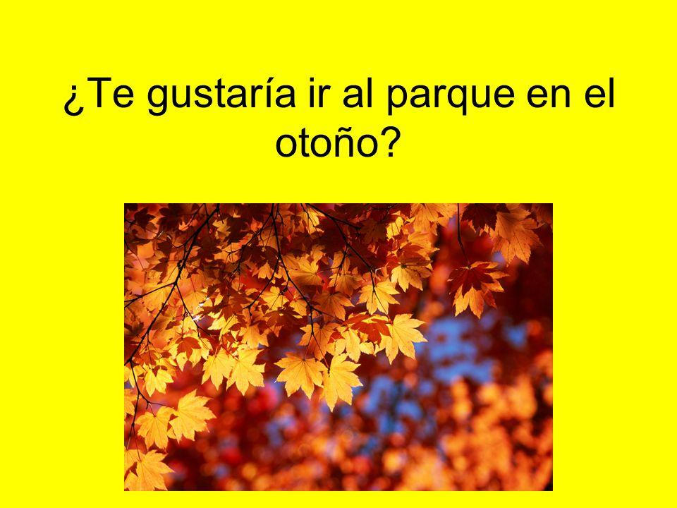 ¿Te gustaría ir al parque en el otoño?