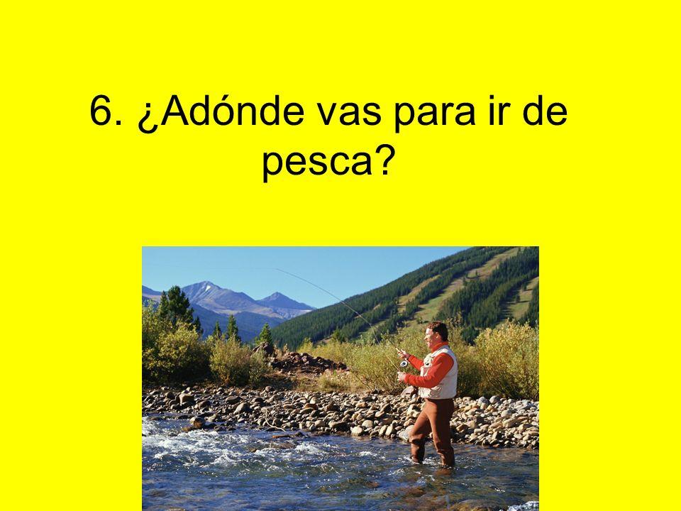 6. ¿Adónde vas para ir de pesca?