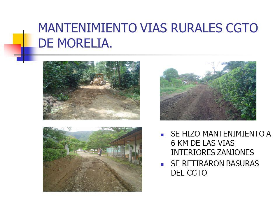 MANTENIMIENTO VIAS RURALES CGTO DE MORELIA. SE HIZO MANTENIMIENTO A 6 KM DE LAS VIAS INTERIORES ZANJONES SE RETIRARON BASURAS DEL CGTO
