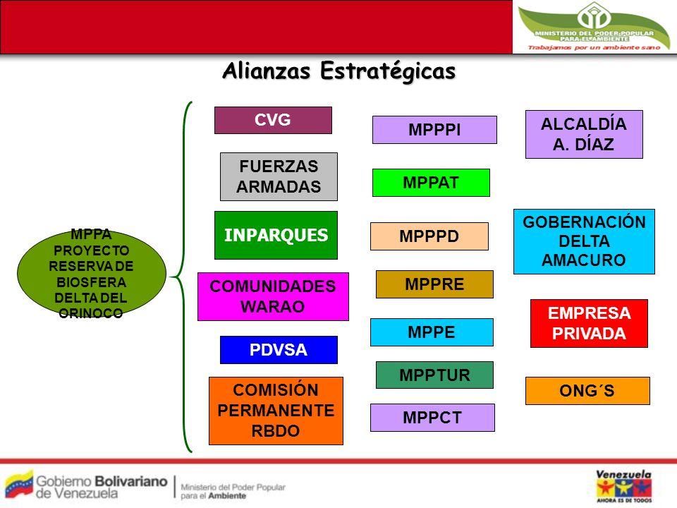 Alianzas Estratégicas MPPA PROYECTO RESERVA DE BIOSFERA DELTA DEL ORINOCO MPPPI MPPRE ONG´S MPPPD CVG INPARQUES PDVSA MPPE EMPRESA PRIVADA MPPTUR COMISIÓN PERMANENTE RBDO COMUNIDADES WARAO FUERZAS ARMADAS GOBERNACIÓN DELTA AMACURO ALCALDÍA A.
