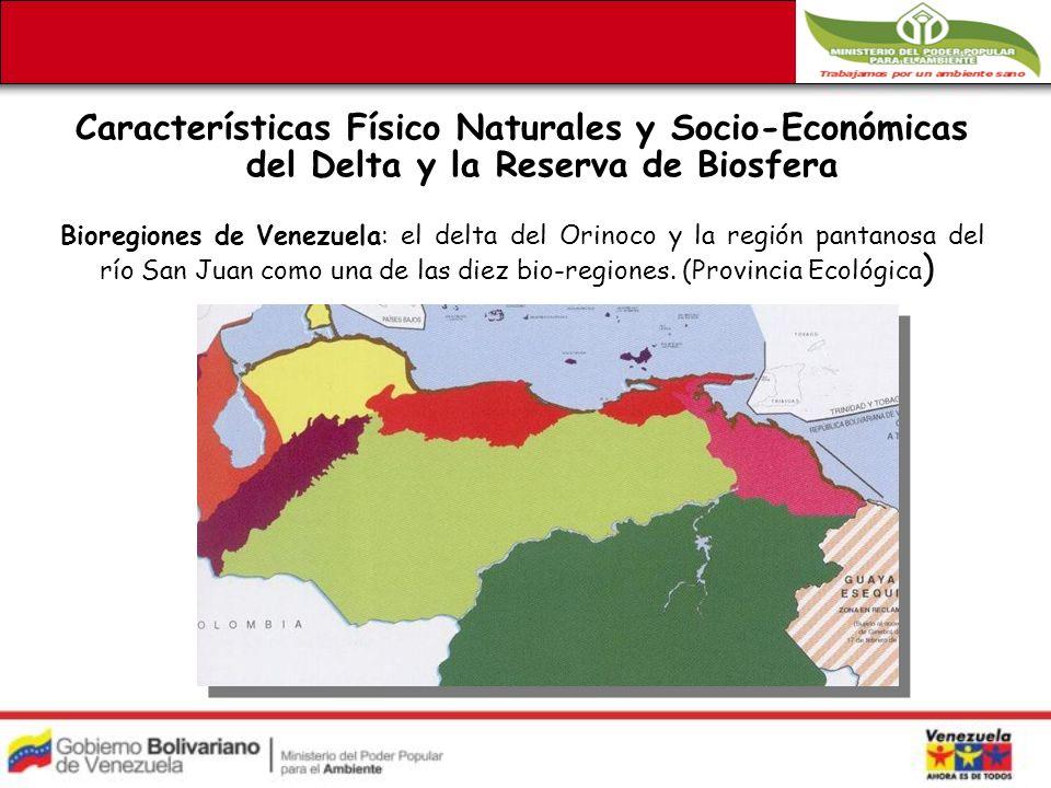 Características Físico Naturales y Socio-Económicas del Delta y la Reserva de Biosfera Bioregiones de Venezuela: el delta del Orinoco y la región pantanosa del río San Juan como una de las diez bio-regiones.