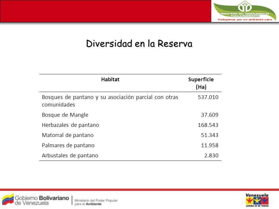 Diversidad en la Reserva HabitatSuperficie (Ha) Bosques de pantano y su asociación parcial con otras comunidades 537.010 Bosque de Mangle37.609 Herbazales de pantano168.543 Matorral de pantano51.343 Palmares de pantano11.958 Arbustales de pantano2.830