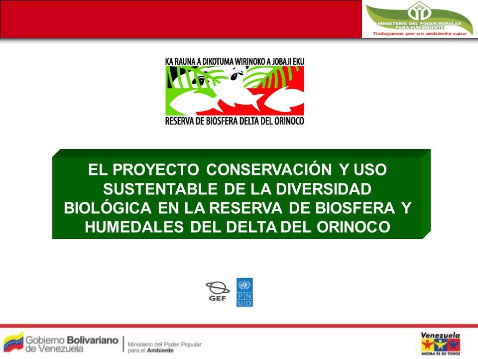 EL PROYECTO CONSERVACIÓN Y USO SUSTENTABLE DE LA DIVERSIDAD BIOLÓGICA EN LA RESERVA DE BIOSFERA Y HUMEDALES DEL DELTA DEL ORINOCO