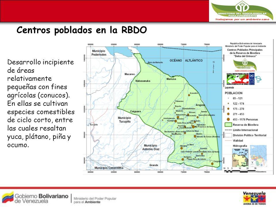 Centros poblados en la RBDO Desarrollo incipiente de áreas relativamente pequeñas con fines agrícolas (conucos).