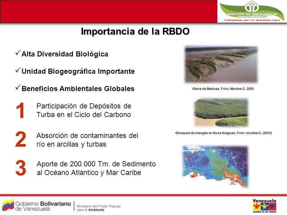 1 Participación de Depósitos de Turba en el Ciclo del Carbono Barra de Mariusa.