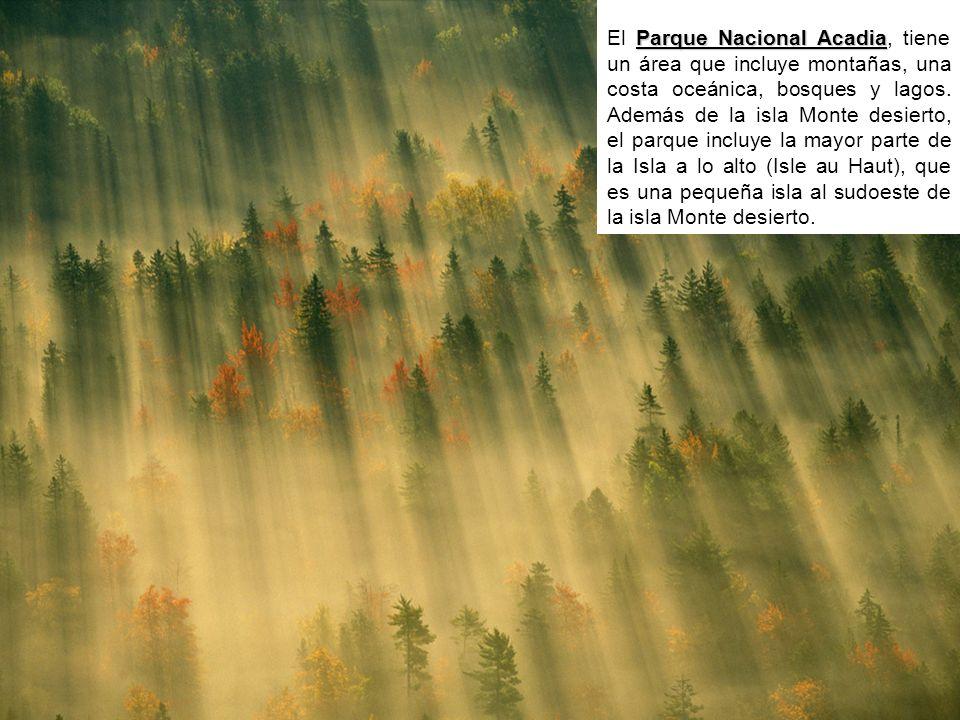 Parque Nacional Acadia El Parque Nacional Acadia, tiene un área que incluye montañas, una costa oceánica, bosques y lagos.