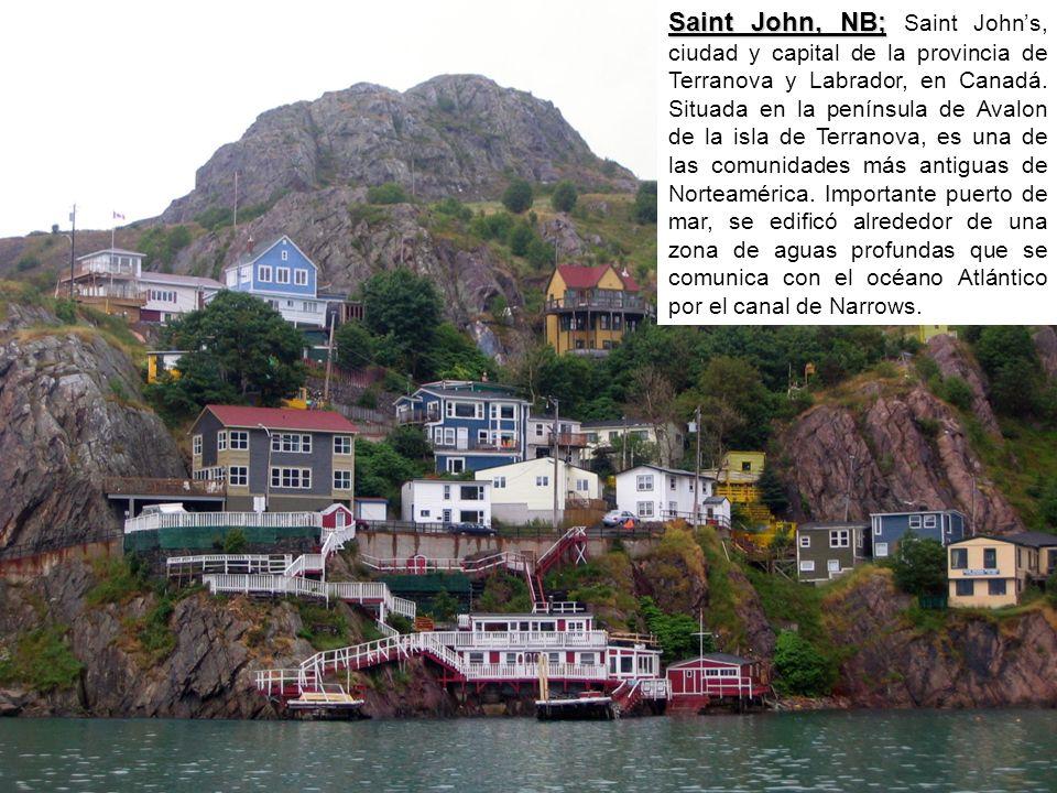Saint John, NB; Saint John, NB; Saint Johns, ciudad y capital de la provincia de Terranova y Labrador, en Canadá.