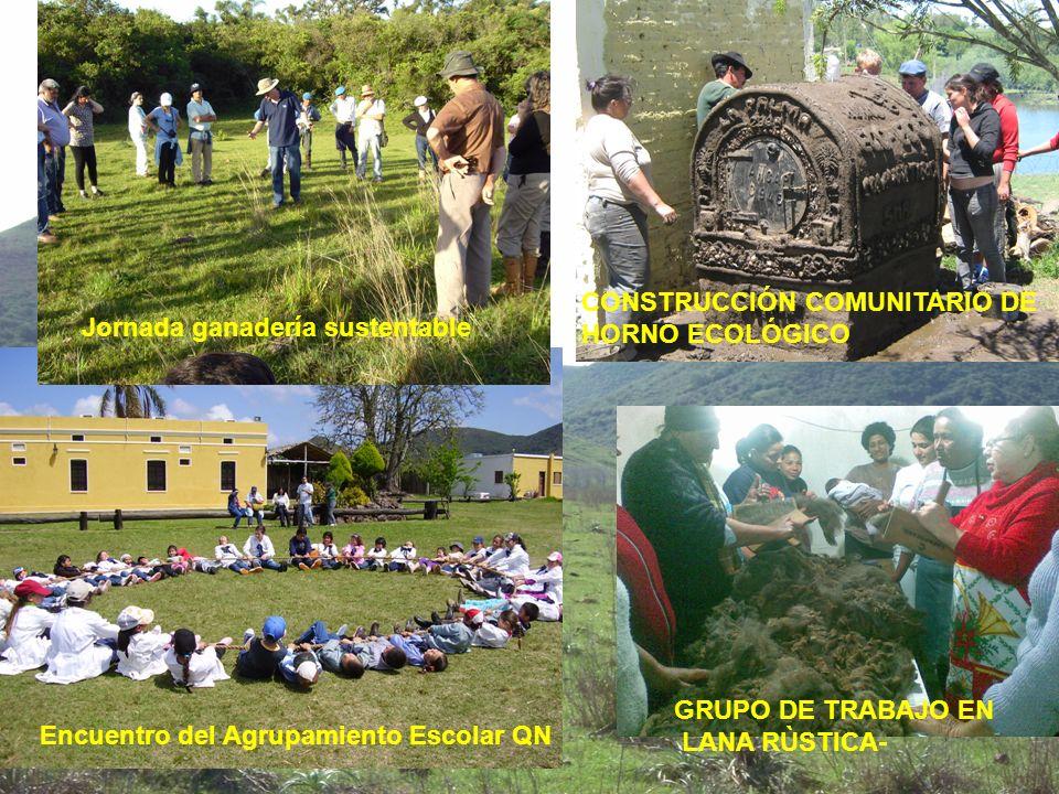 CONSTRUCCIÓN COMUNITARIO DE HORNO ECOLÓGICO GRUPO DE TRABAJO EN LANA RÙSTICA- Encuentro del Agrupamiento Escolar QN Jornada ganadería sustentable