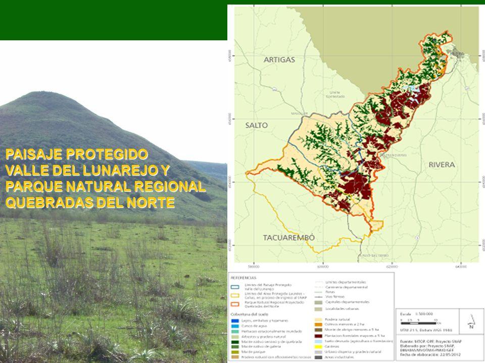 VALLE DEL LUNAREJO Y PARQUE NATURAL REGIONAL QUEBRADAS DEL NORTE
