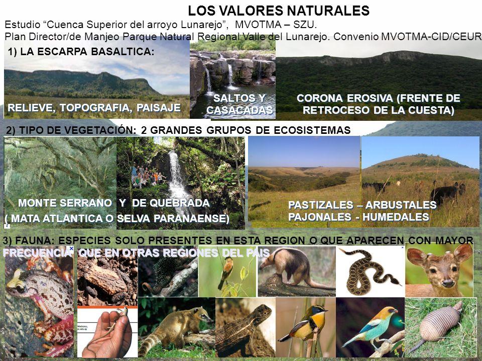 1) LA ESCARPA BASALTICA: LOS VALORES NATURALES Estudio Cuenca Superior del arroyo Lunarejo, MVOTMA – SZU. Plan Director/de Manjeo Parque Natural Regio