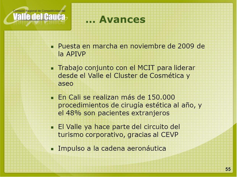 55 … Avances Puesta en marcha en noviembre de 2009 de la APIVP Trabajo conjunto con el MCIT para liderar desde el Valle el Cluster de Cosmética y aseo