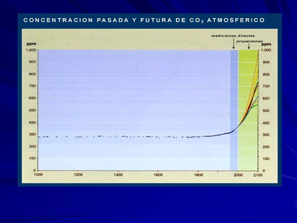 CONSECUENCIAS Aumento de la temperatura para el 2100 calculo optimista+ 1,4 °C a el mas pesimista + 5,8 °C para el 2100 calculo optimista+ 1,4 °C a el mas pesimista + 5,8 °C Aumento de las Precipitaciones Retrocesos de glaciares y campos de hielo Aumento del nivel medio del mar Entre + 8cm y + 88 cm.
