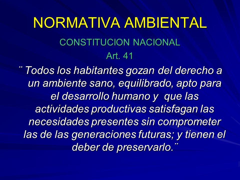CONSTITUCION NACIONAL Art. 41 ¨ Todos los habitantes gozan del derecho a un ambiente sano, equilibrado, apto para el desarrollo humano y que las activ
