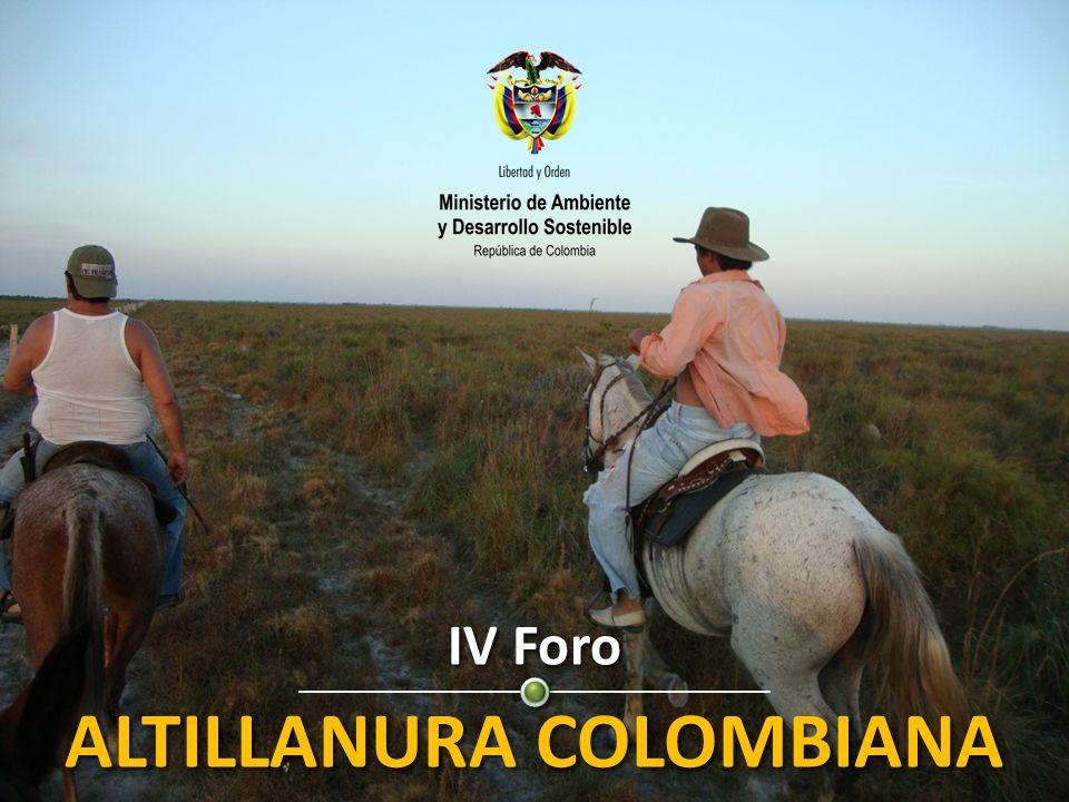 IV Foro ALTILLANURA COLOMBIANA Potencial productivo y energético del país Perspectivas del Desarrollo Sostenible para la Altillanura IV Foro ALTILLANURA COLOMBIANA Potencial productivo y energético del país Perspectivas del Desarrollo Sostenible para la Altillanura