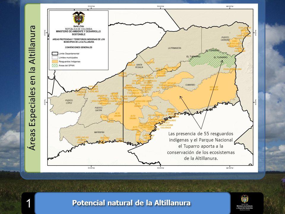 Áreas Especiales en la Altillanura Las presencia de 55 resguardos indígenas y el Parque Nacional el Tuparro aporta a la conservación de los ecosistema