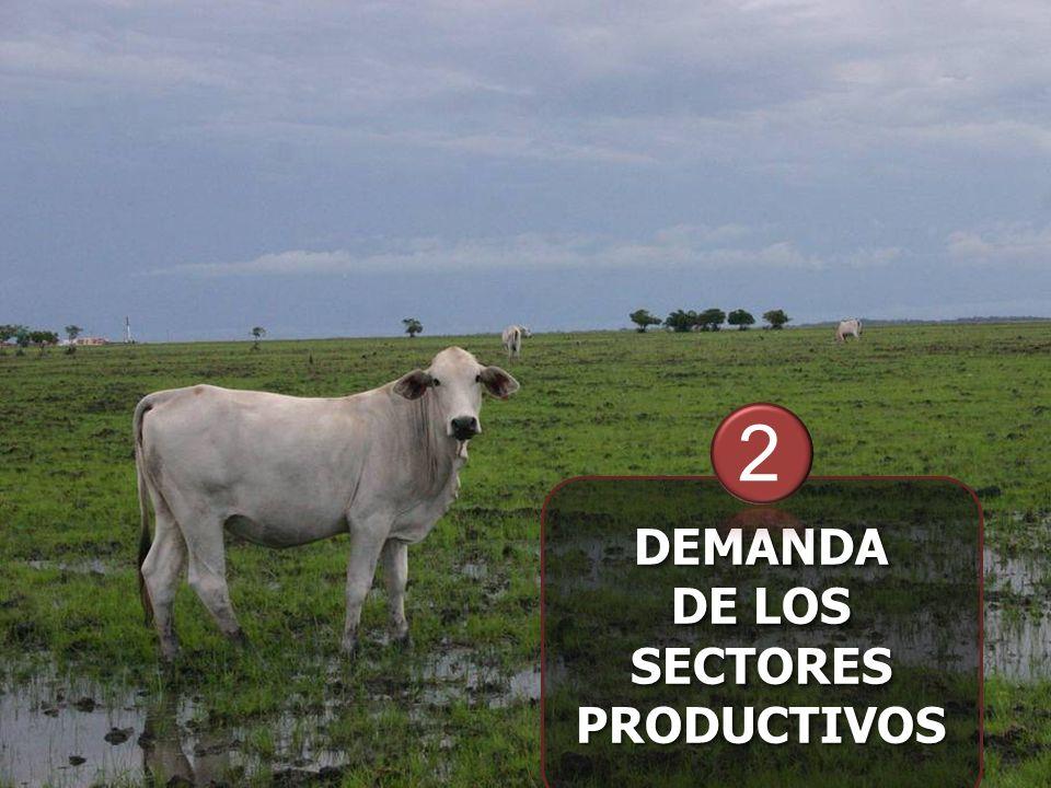 DEMANDA DE LOS SECTORES PRODUCTIVOS DEMANDA 2