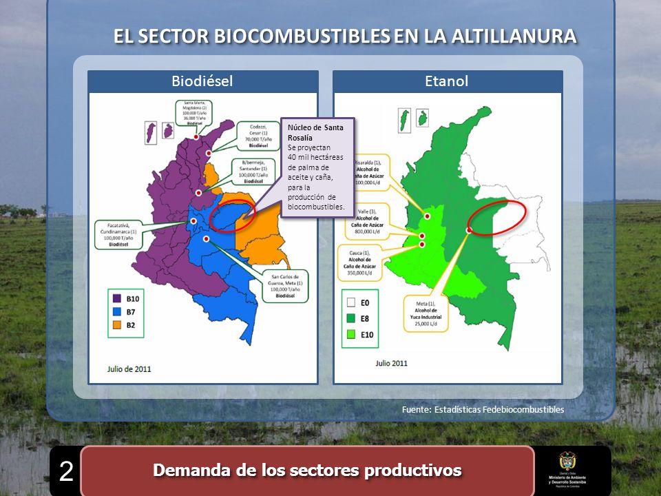 EL SECTOR BIOCOMBUSTIBLES EN LA ALTILLANURA EtanolBiodiésel Núcleo de Santa Rosalía Se proyectan 40 mil hectáreas de palma de aceite y caña, para la p