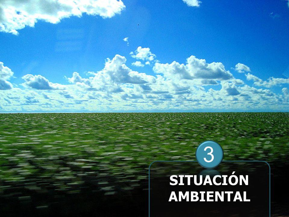 SITUACIÓN AMBIENTAL 3