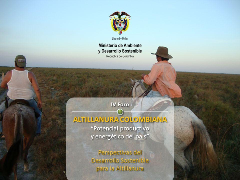 IV Foro ALTILLANURA COLOMBIANA Potencial productivo y energético del país Perspectivas del Desarrollo Sostenible para la Altillanura IV Foro ALTILLANU