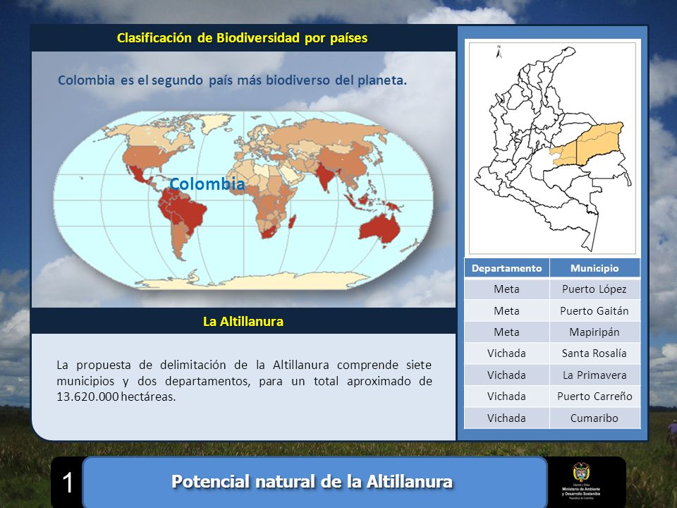 Colombia Colombia es el segundo país más biodiverso del planeta. Clasificación de Biodiversidad por países La Altillanura DepartamentoMunicipio MetaPu
