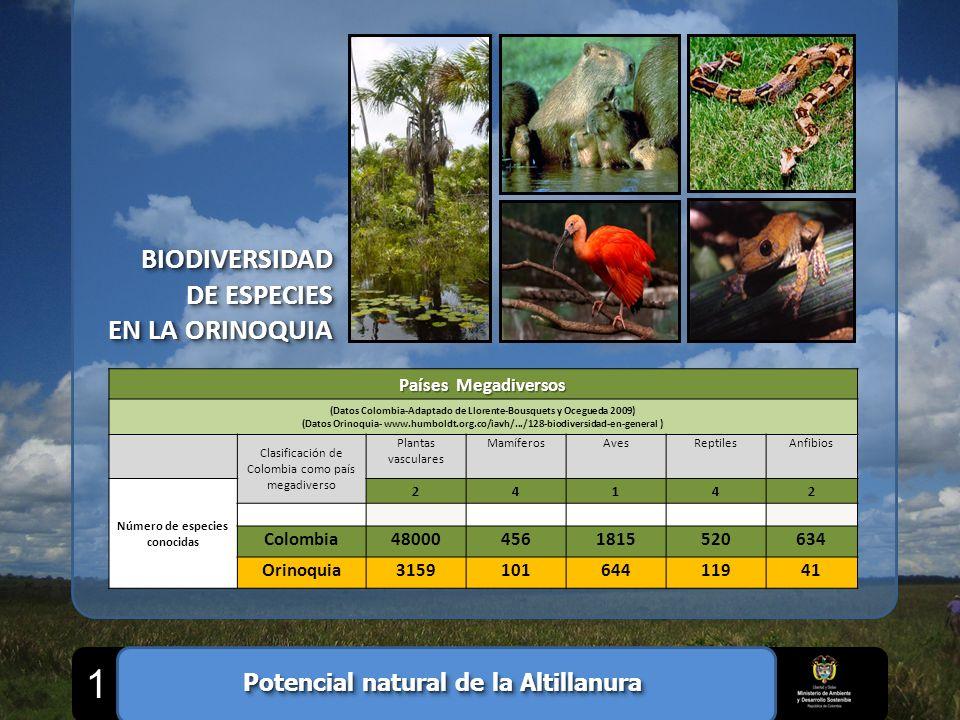 BIODIVERSIDAD DE ESPECIES EN LA ORINOQUIA BIODIVERSIDAD DE ESPECIES EN LA ORINOQUIA Países Megadiversos (Datos Colombia-Adaptado de Llorente-Bousquets