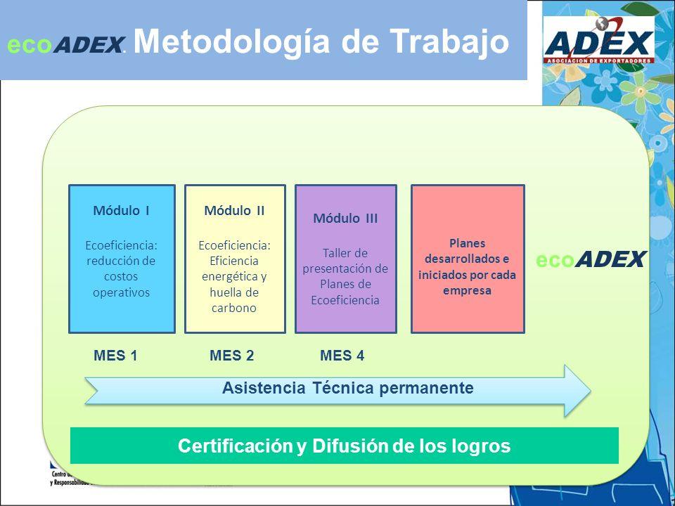 Módulo I Ecoeficiencia: reducción de costos operativos Módulo III Taller de presentación de Planes de Ecoeficiencia Módulo II Ecoeficiencia: Eficiencia energética y huella de carbono Planes desarrollados e iniciados por cada empresa Certificación y Difusión de los logros Asistencia Técnica permanente eco ADEX.