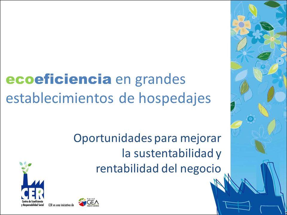 ecoeficiencia en grandes establecimientos de hospedajes Oportunidades para mejorar la sustentabilidad y rentabilidad del negocio