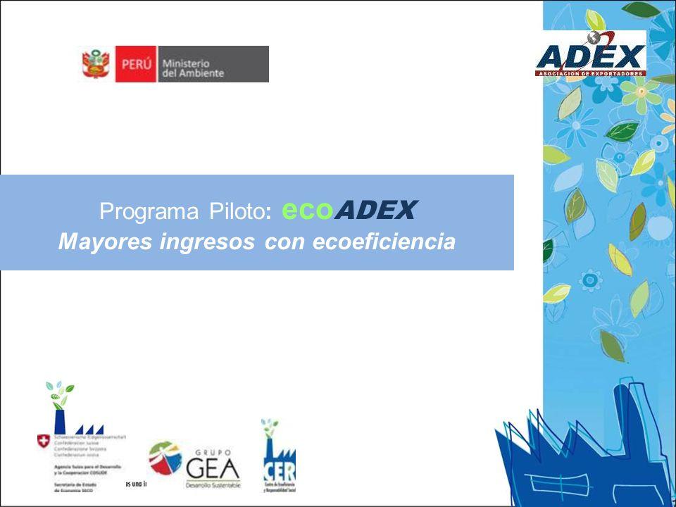 Programa Piloto: eco ADEX Mayores ingresos con ecoeficiencia