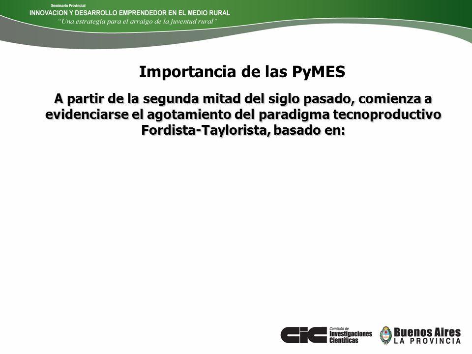 Importancia de las PyMES A partir de la segunda mitad del siglo pasado, comienza a evidenciarse el agotamiento del paradigma tecnoproductivo Fordista-
