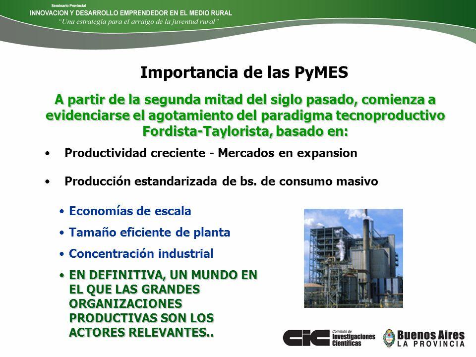 Importancia de las PyMES Productividad creciente - Mercados en expansion Producción estandarizada de bs. de consumo masivo Economías de escala Tamaño