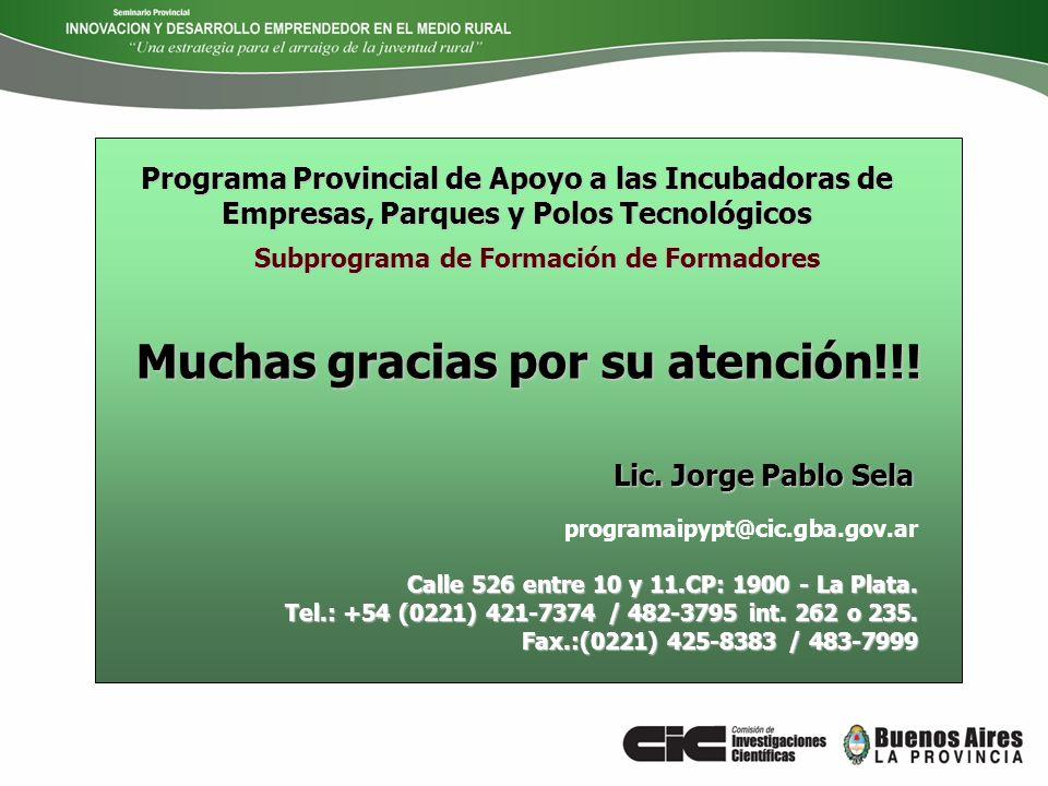 Programa Provincial de Apoyo a las Incubadoras de Empresas, Parques y Polos Tecnológicos Subprograma de Formación de Formadores programaipypt@cic.gba.