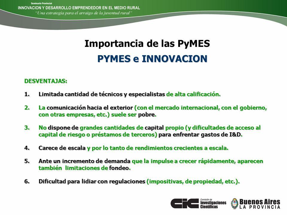 Importancia de las PyMES ¿Qué pasó entonces.