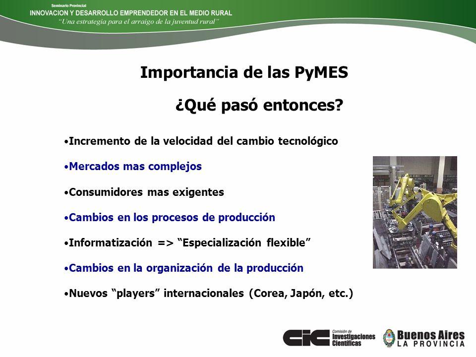 Importancia de las PyMES Las pequeñas unidades económicas se revelan como dispositivos aptos para atender demandas especializadas (nichos o pliegues de mercado) debido a su capacidad de adaptación y flexibilidad ¿Qué pasó entonces.