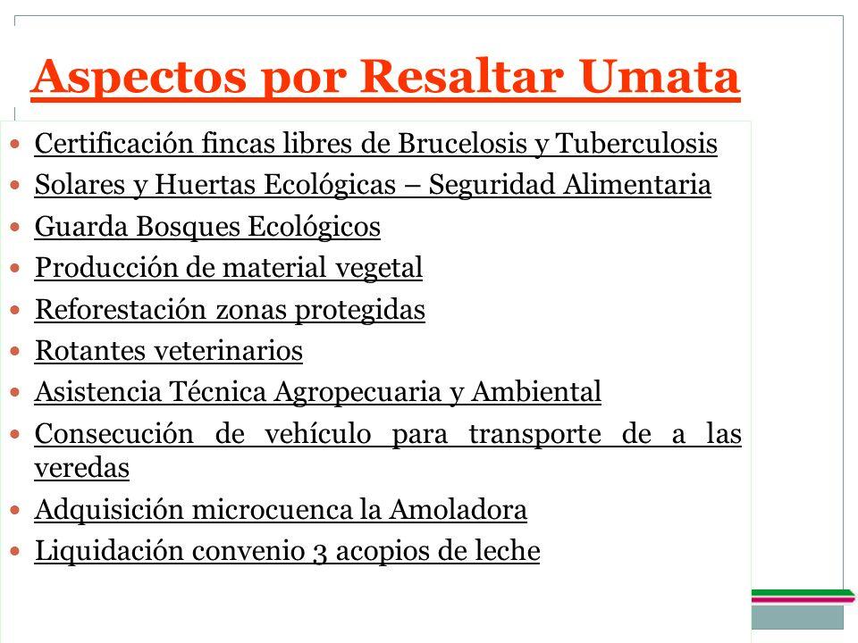 Aspectos por Resaltar Umata Certificación fincas libres de Brucelosis y Tuberculosis Solares y Huertas Ecológicas – Seguridad Alimentaria Guarda Bosqu