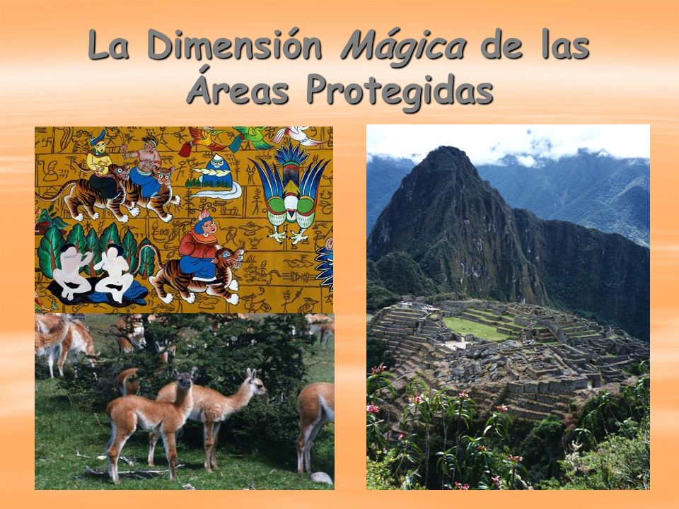 La Dimensión Mágica de las Áreas Protegidas