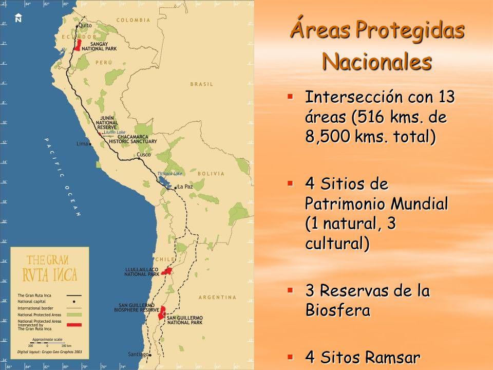 Áreas Protegidas Nacionales Intersección con 13 áreas (516 kms. de 8,500 kms. total) Intersección con 13 áreas (516 kms. de 8,500 kms. total) 4 Sitios