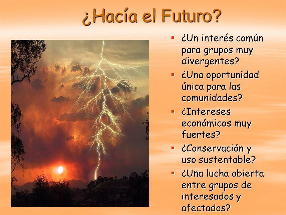 ¿ Hacía el Futuro? ¿Un interés común para grupos muy divergentes? ¿Un interés común para grupos muy divergentes? ¿Una oportunidad única para las comun