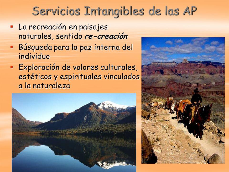 Servicios Intangibles de las AP La recreación en paisajes naturales, sentido re-creación La recreación en paisajes naturales, sentido re-creación Búsq