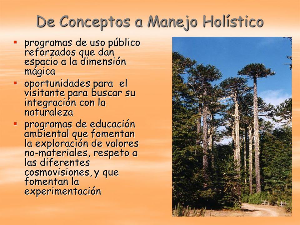 De Conceptos a Manejo Holístico programas de uso público reforzados que dan espacio a la dimensión mágica programas de uso público reforzados que dan