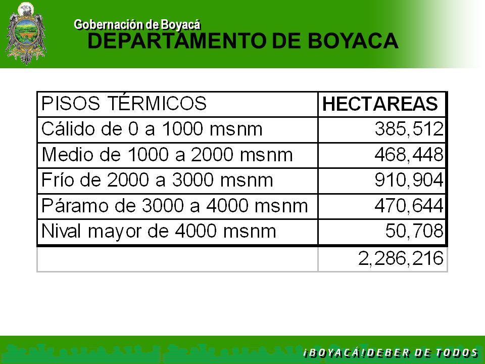 Gobernación de Boyacá DEPARTAMENTO DE BOYACA