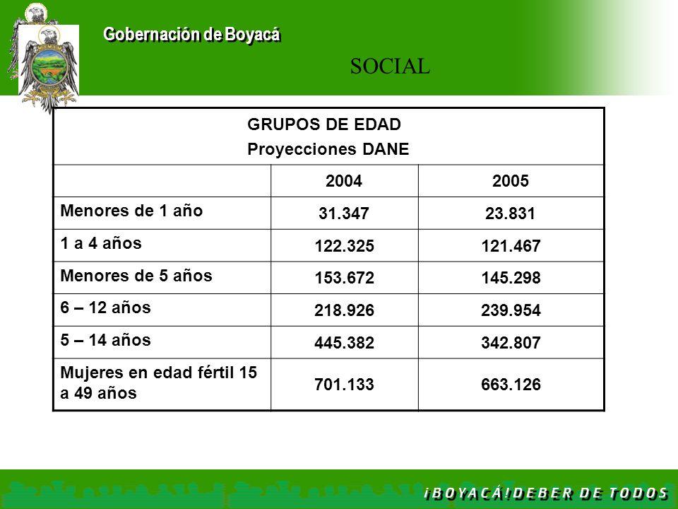 Gobernación de Boyacá GRUPOS DE EDAD Proyecciones DANE 20042005 Menores de 1 año 31.34723.831 1 a 4 años 122.325121.467 Menores de 5 años 153.672145.2
