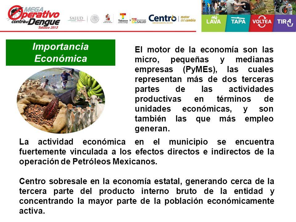 Importancia Económica El motor de la economía son las micro, pequeñas y medianas empresas (PyMEs), las cuales representan más de dos terceras partes d
