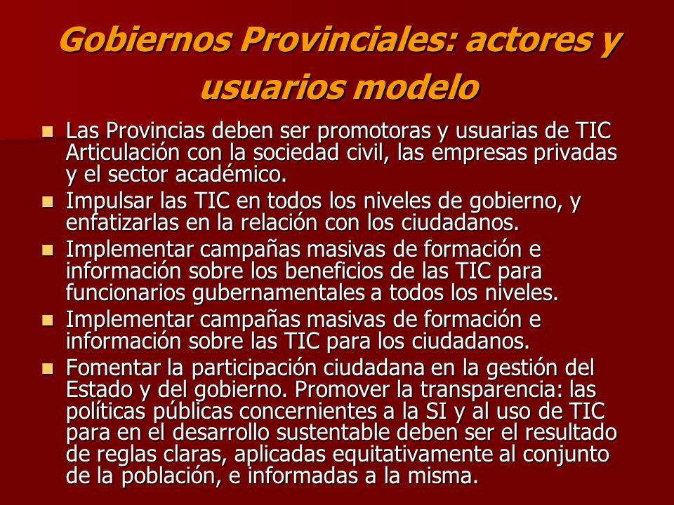 Gobiernos Provinciales: actores y usuarios modelo Las Provincias deben ser promotoras y usuarias de TIC Articulación con la sociedad civil, las empresas privadas y el sector académico.