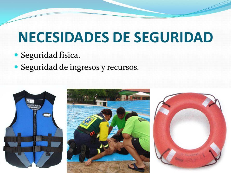 NECESIDADES DE SEGURIDAD Seguridad física. Seguridad de ingresos y recursos.