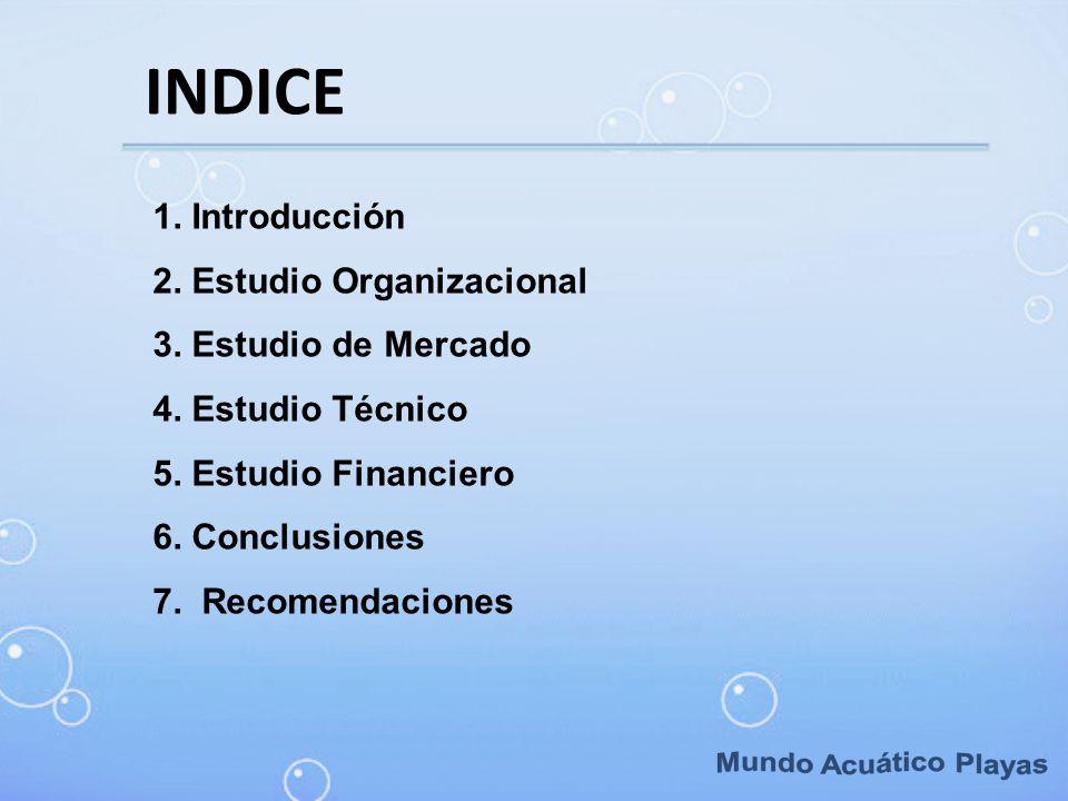 INDICE 1. Introducción 2. Estudio Organizacional 3. Estudio de Mercado 4. Estudio Técnico 5. Estudio Financiero 6. Conclusiones 7. Recomendaciones
